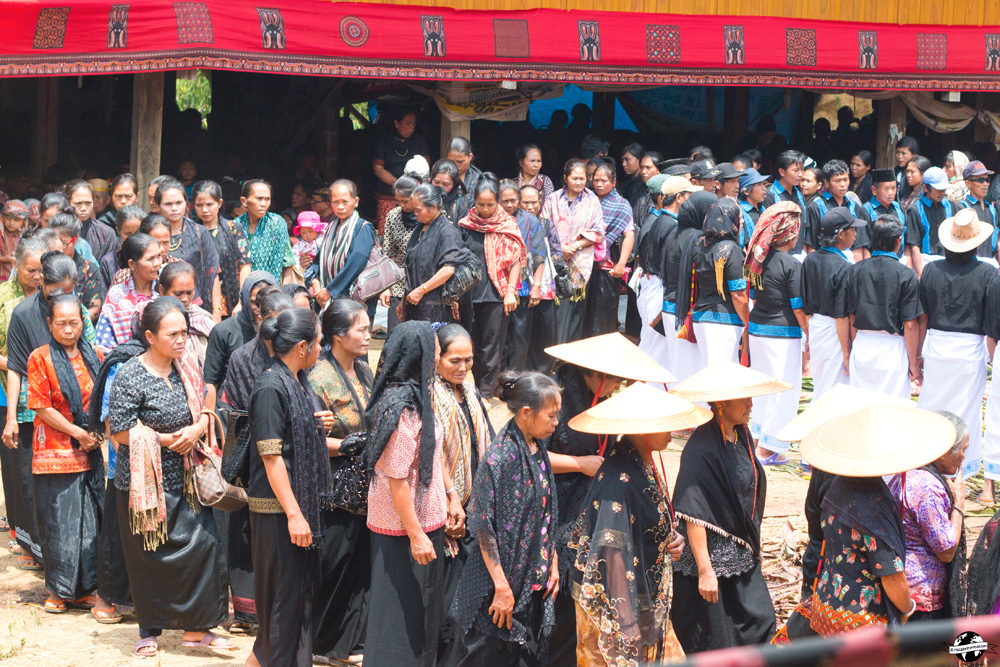 Funérailles pays Toraja