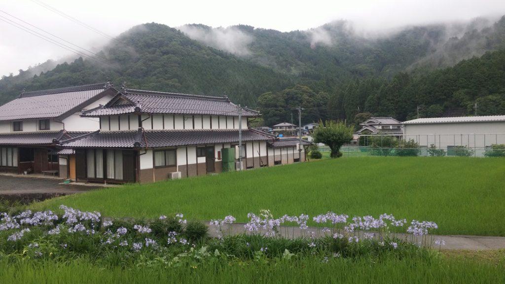 ichijima